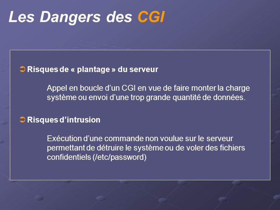 Les Dangers des CGI  Risques de « plantage » du serveur Appel en boucle d'un CGI en vue de faire monter la charge système ou envoi d'une trop grande