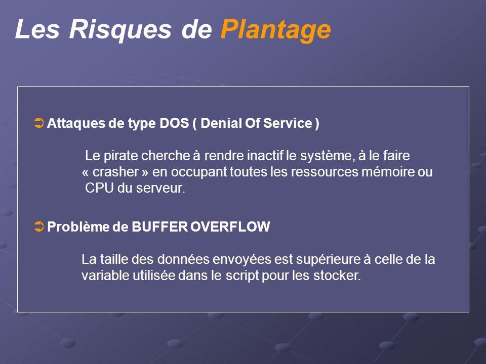 Les Risques de Plantage  Attaques de type DOS ( Denial Of Service ) Le pirate cherche à rendre inactif le système, à le faire « crasher » en occupant