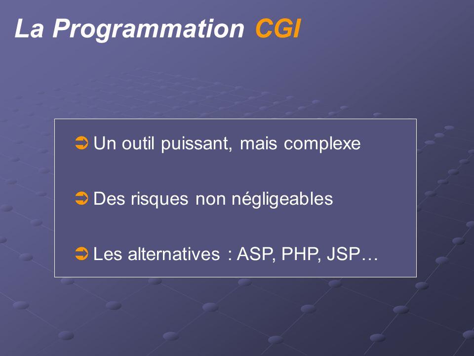 La Programmation CGI  Un outil puissant, mais complexe  Des risques non négligeables  Les alternatives : ASP, PHP, JSP…