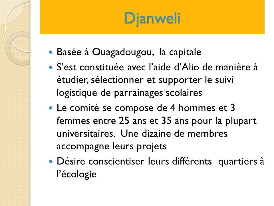 Djanweli Basée à Ouagadougou, la capitale S'est constituée avec l'aide d'Alio de manière à étudier, sélectionner et supporter le suivi logistique de p