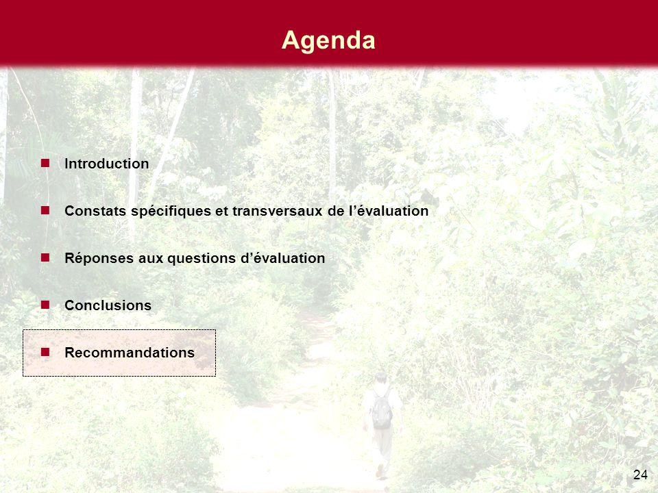 24 Agenda Introduction Constats spécifiques et transversaux de l'évaluation Réponses aux questions d'évaluation Conclusions Recommandations