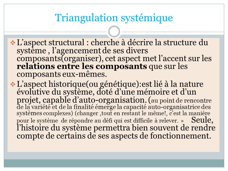 Triangulation systémique  L'aspect structural : cherche à décrire la structure du système, l'agencement de ses divers composants(organiser), cet aspect met l'accent sur les relations entre les composants que sur les composants eux-mêmes.