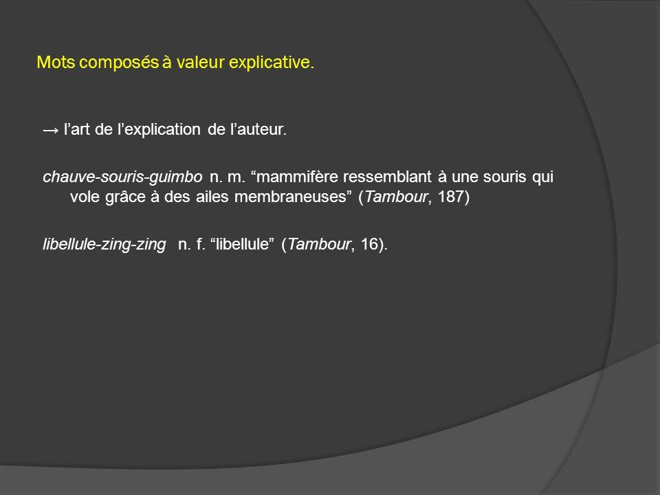 Mots composés à valeur explicative. → l'art de l'explication de l'auteur.