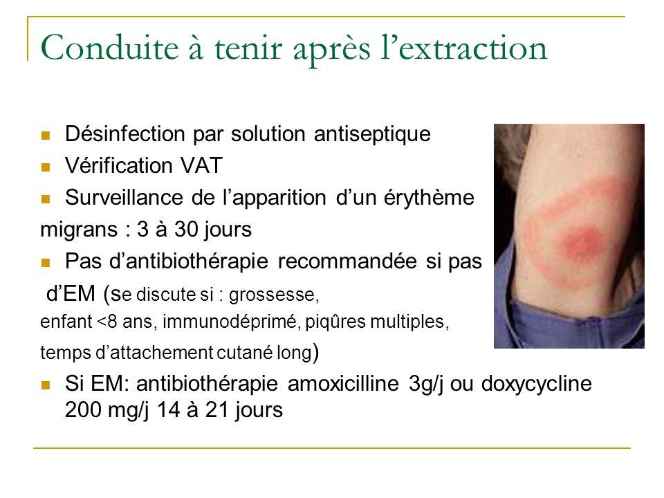 Conduite à tenir après l'extraction Désinfection par solution antiseptique Vérification VAT Surveillance de l'apparition d'un érythème migrans : 3 à 30 jours Pas d'antibiothérapie recommandée si pas d'EM (s e discute si : grossesse, enfant <8 ans, immunodéprimé, piqûres multiples, temps d'attachement cutané long ) Si EM: antibiothérapie amoxicilline 3g/j ou doxycycline 200 mg/j 14 à 21 jours