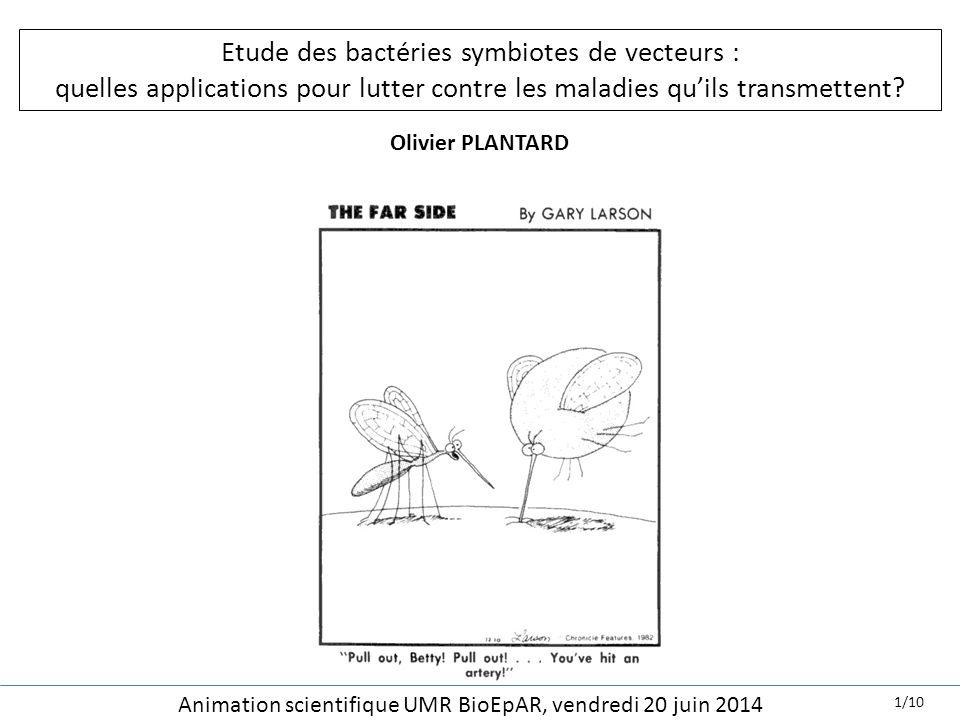 Etude des bactéries symbiotes de vecteurs : quelles applications pour lutter contre les maladies qu'ils transmettent? Olivier PLANTARD Animation scien