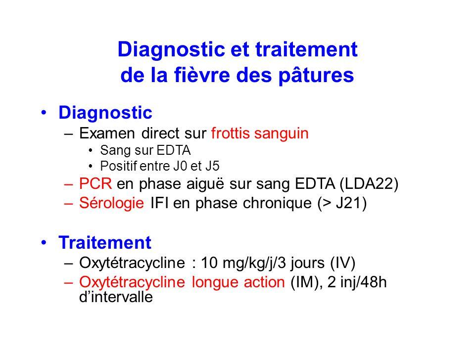 Diagnostic et traitement de la fièvre des pâtures Diagnostic –Examen direct sur frottis sanguin Sang sur EDTA Positif entre J0 et J5 –PCR en phase aig
