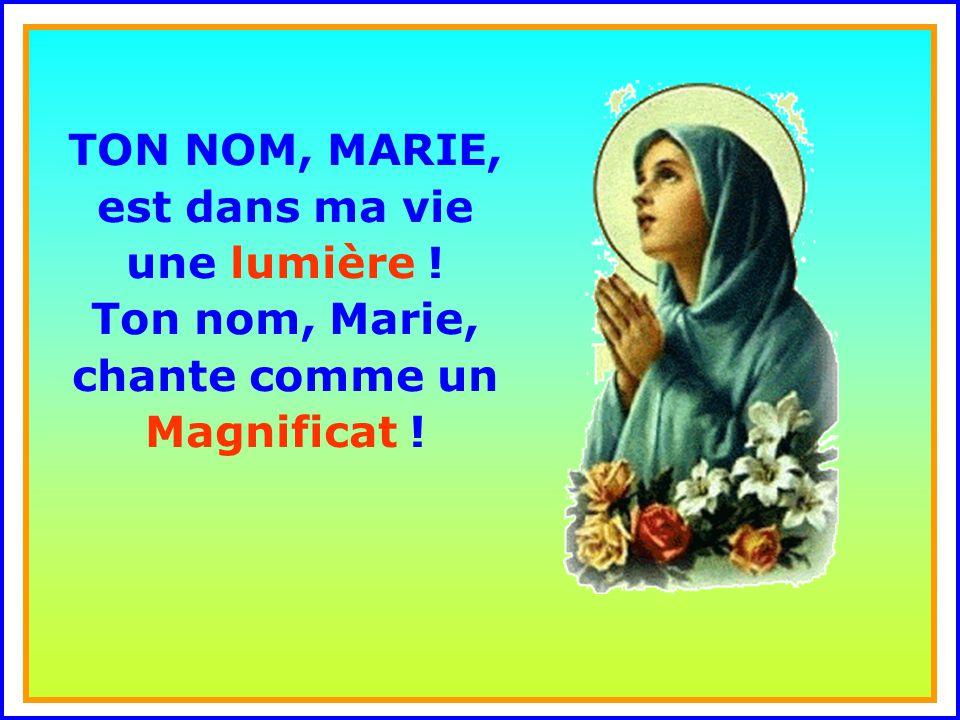 .. Sainte Marie, Mère de Dieu, prie pour nous tes enfants. Maintenant et à l'heure de notre naissance. Amen !