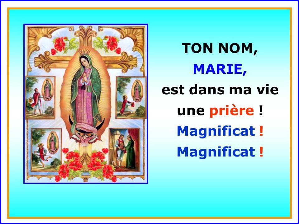 .. TON NOM, MARIE, est dans ma vie une lumière ! Ton nom, Marie, chante comme un Magnificat !