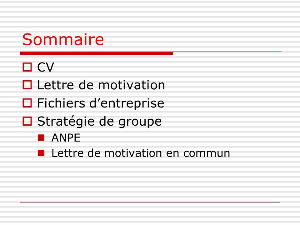 Sommaire  CV  Lettre de motivation  Fichiers d'entreprise  Stratégie de groupe ANPE Lettre de motivation en commun