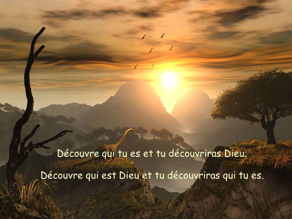 Découvre qui tu es et tu découvriras Dieu; Découvre qui est Dieu et tu découvriras qui tu es.