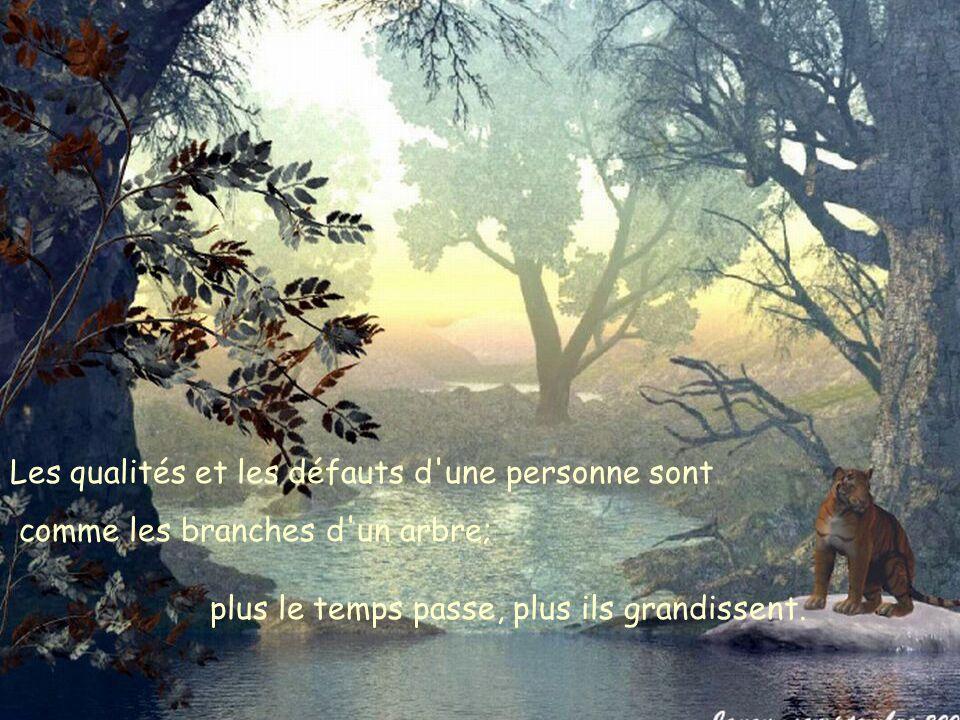 Les qualités et les défauts d une personne sont comme les branches d un arbre; plus le temps passe, plus ils grandissent.
