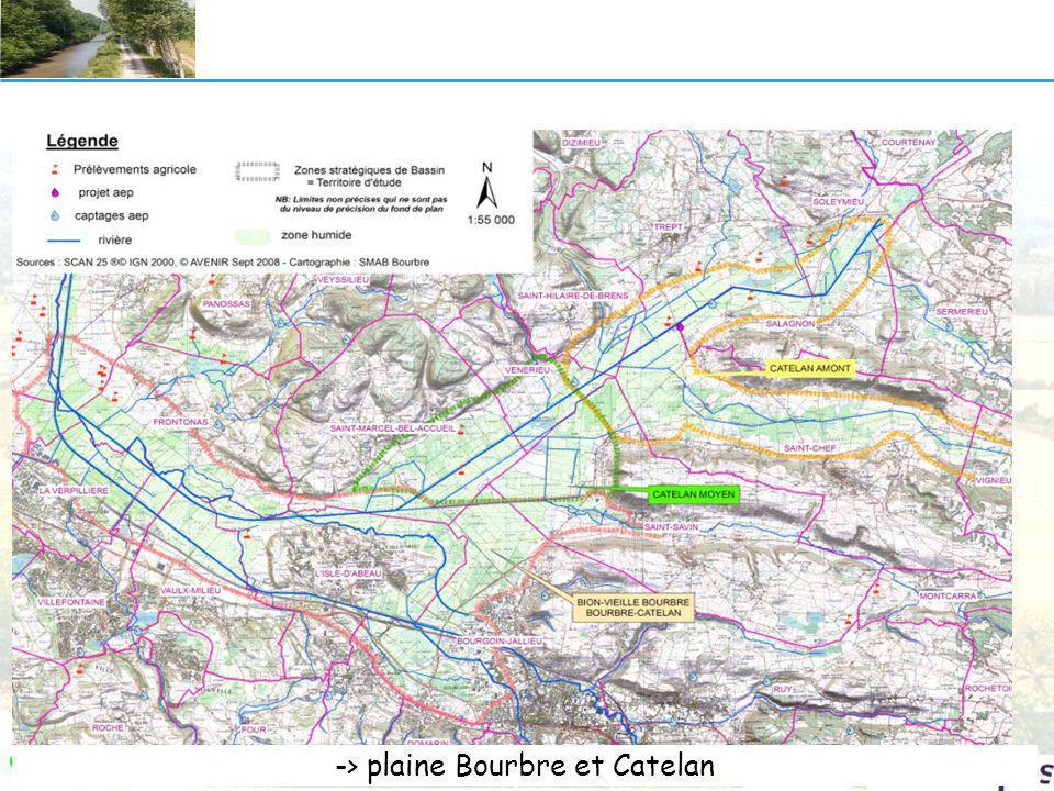 Bion Vieille Bourbre Bourbre ©Dejean\ISAIR-2003 pour SMABBourbre
