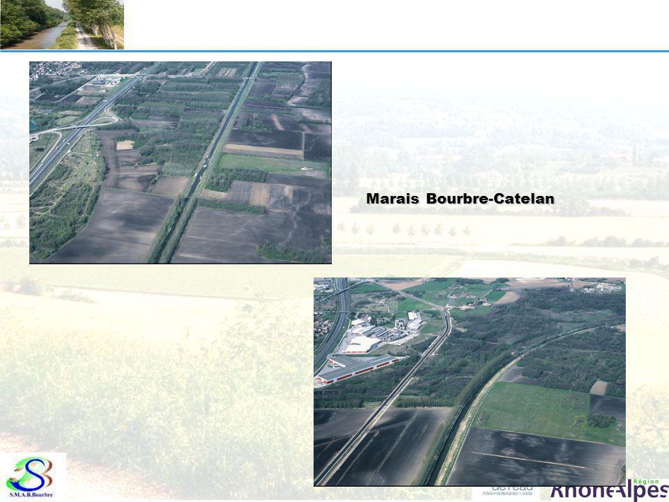 « Marais » du Catelan au confluent ruisseau du Ver Catelan