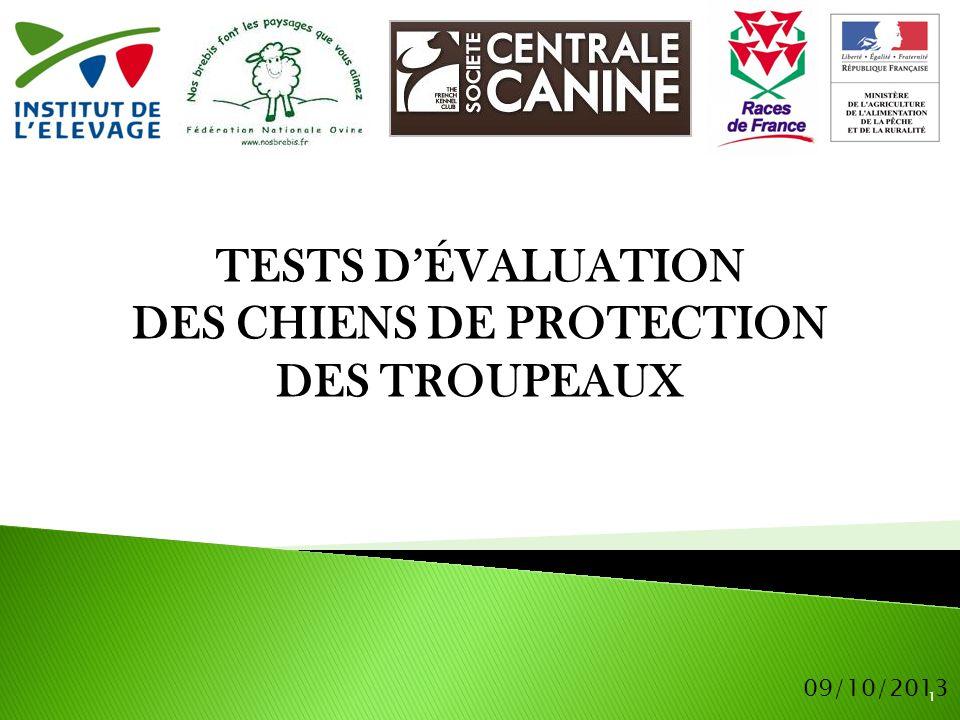 2 Fin 2006 : mise en œuvre d'un programme national « chien de protection » sous l égide du MAAF piloté par l'IE en lien avec la SCC.