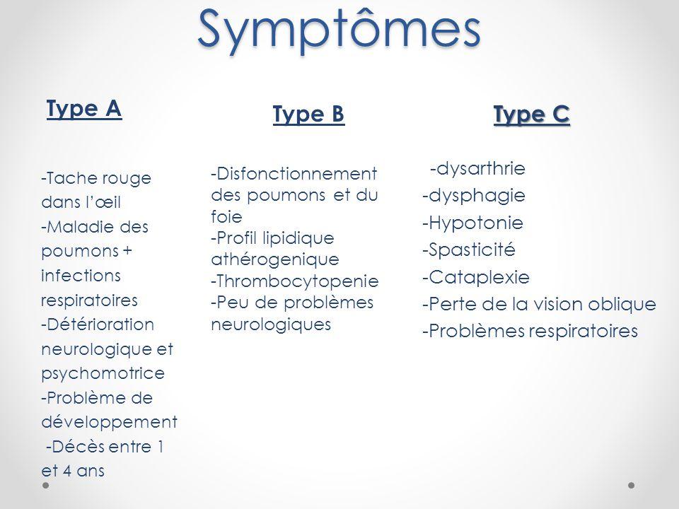 Symptômes -Disfonctionnement des poumons et du foie -Profil lipidique athérogenique -Thrombocytopenie -Peu de problèmes neurologiques -Tache rouge dans l'œil -Maladie des poumons + infections respiratoires -Détérioration neurologique et psychomotrice -Problème de développement -Décès entre 1 et 4 ans Type A Type B Type C -dysarthrie -dysphagie -Hypotonie -Spasticité -Cataplexie -Perte de la vision oblique -Problèmes respiratoires