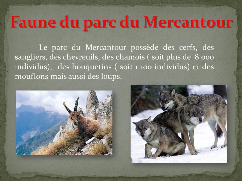 Le parc du Mercantour se situe dans le sud-est de la France à proximité de Nice et de Monaco, dans les Alpes- Maritimes (06) en région Provence Alpes-