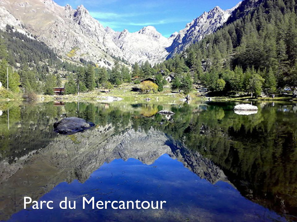 Sommaire I.Parc Mercantour Son année de création Localisation Son relief superficie Son climat Sa faune Sa flore Ses richesses archéologiques II.
