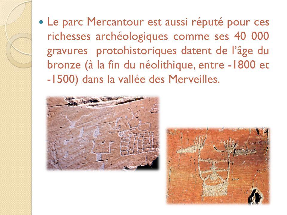 Le parc Mercantour est aussi réputé pour ces richesses archéologiques comme ses 40 000 gravures protohistoriques datent de l'âge du bronze (à la fin d
