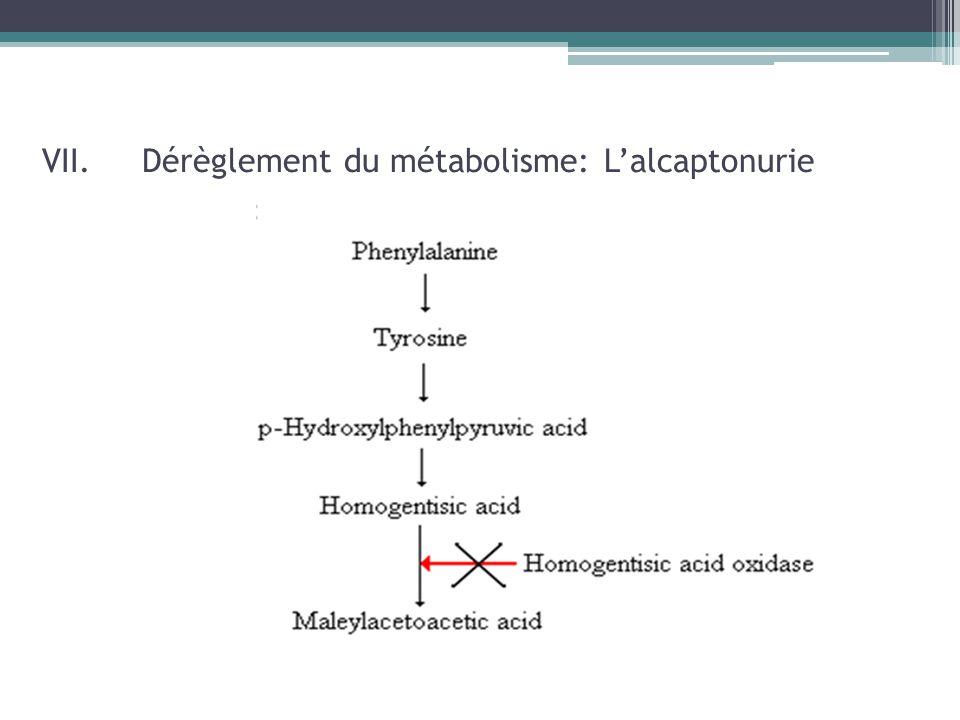 VII. Dérèglement du métabolisme: L'alcaptonurie