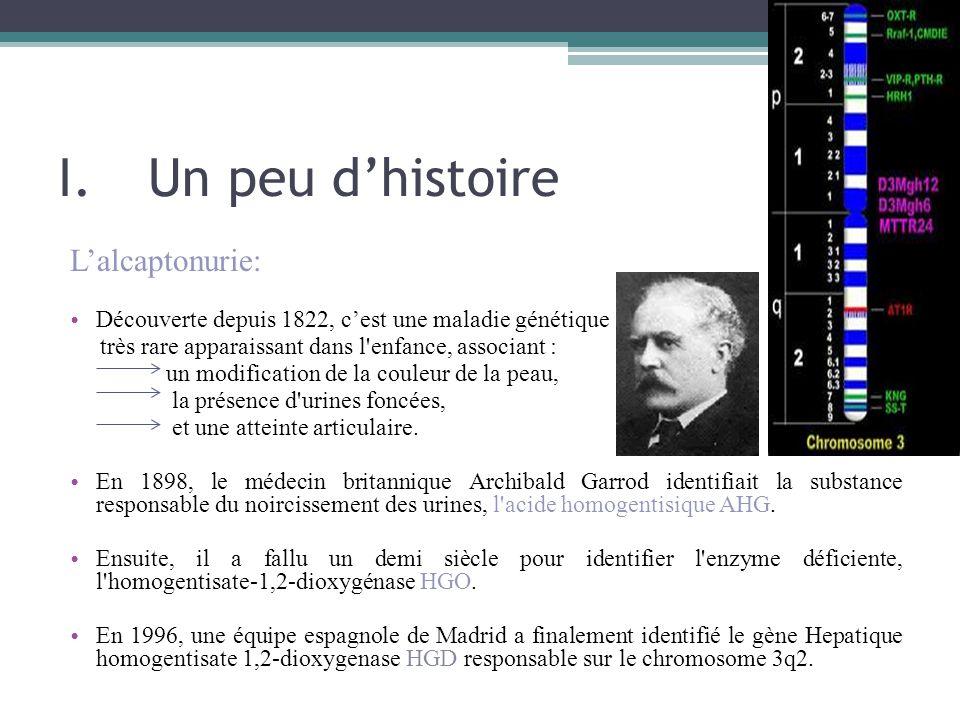 I.Un peu d'histoire L'alcaptonurie: Découverte depuis 1822, c'est une maladie génétique très rare apparaissant dans l'enfance, associant : un modifica