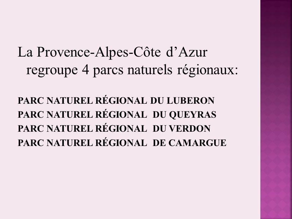 La Provence-Alpes-Côte d'Azur regroupe 4 parcs naturels régionaux: PARC NATUREL RÉGIONAL DU LUBERON PARC NATUREL RÉGIONAL DU QUEYRAS PARC NATUREL RÉGI