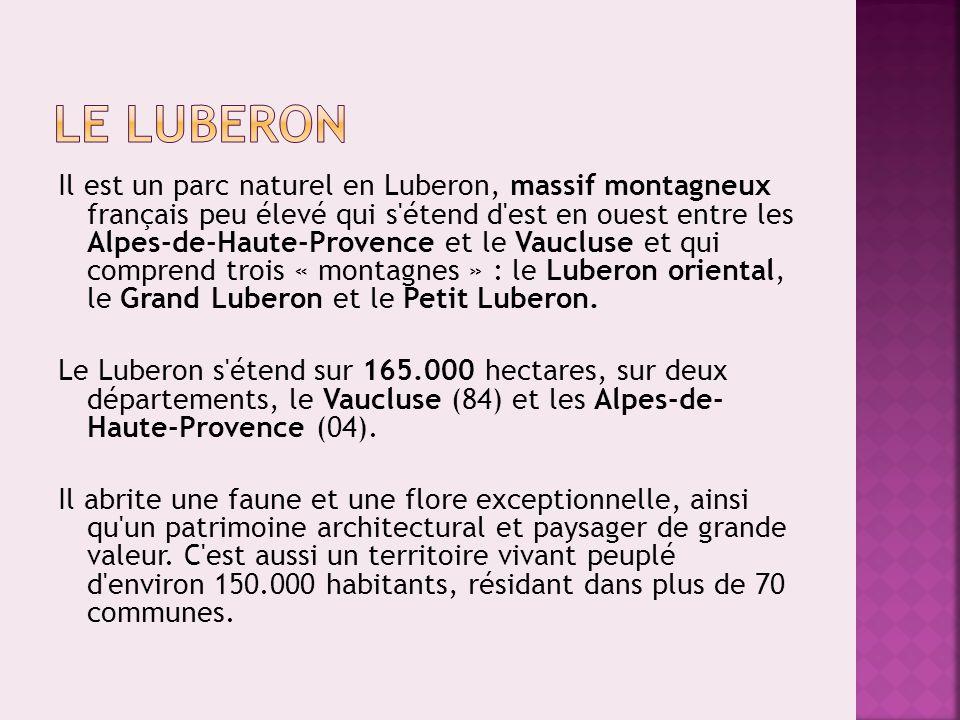 Il est un parc naturel en Luberon, massif montagneux français peu élevé qui s'étend d'est en ouest entre les Alpes-de-Haute-Provence et le Vaucluse et