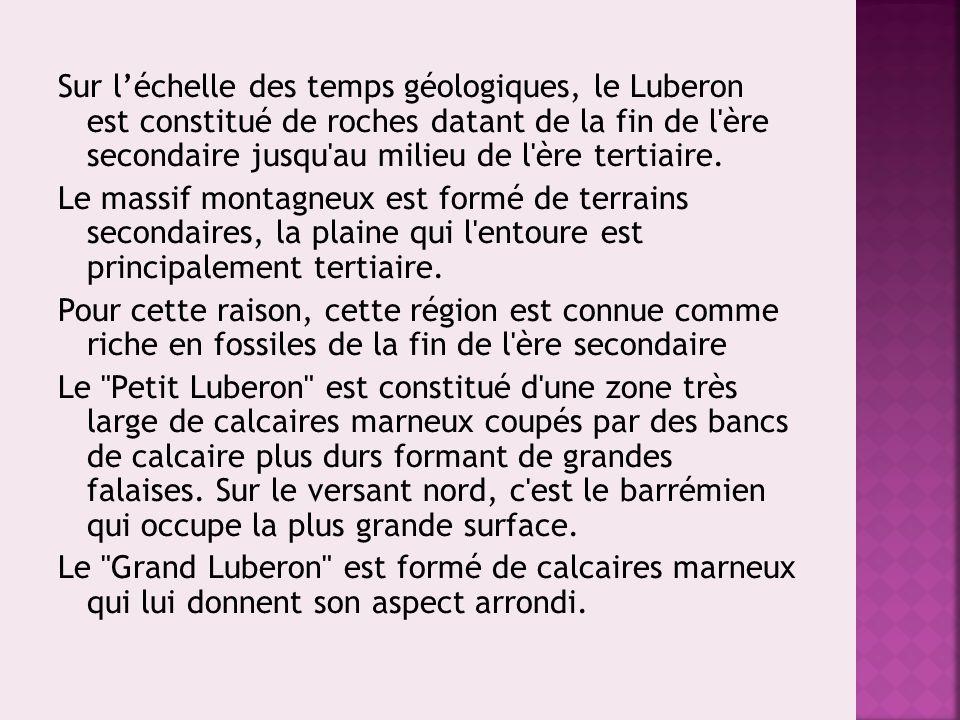 Sur l'échelle des temps géologiques, le Luberon est constitué de roches datant de la fin de l'ère secondaire jusqu'au milieu de l'ère tertiaire. Le ma