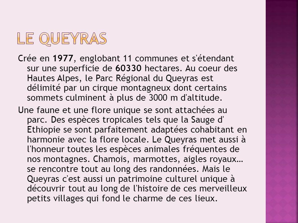Crée en 1977, englobant 11 communes et s'étendant sur une superficie de 60330 hectares. Au coeur des Hautes Alpes, le Parc Régional du Queyras est dél