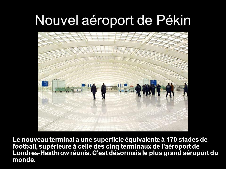 Nouvel aéroport de Pékin FIN