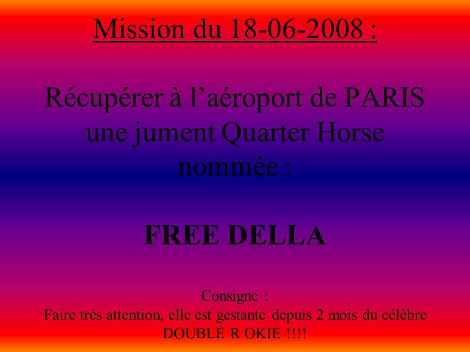 Mission du 18-06-2008 : Récupérer à l'aéroport de PARIS une jument Quarter Horse nommée : FREE DELLA Consigne : Faire très attention, elle est gestante depuis 2 mois du célèbre DOUBLE R OKIE !!!!
