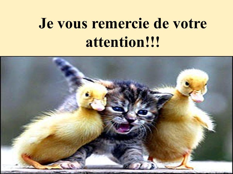 Je vous remercie de votre attention!!!