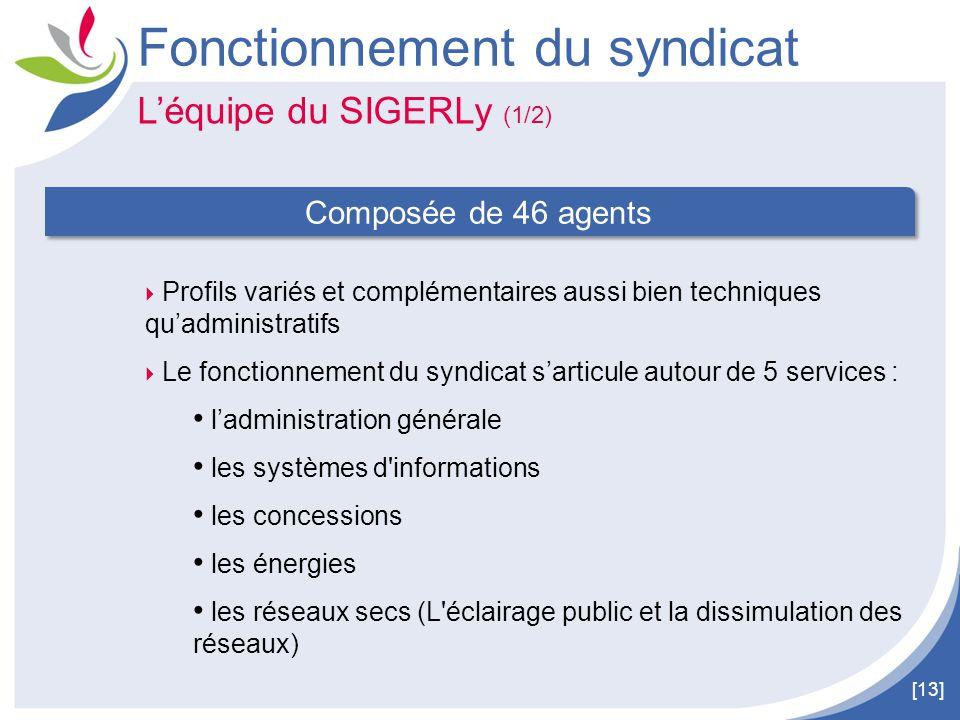 [13] L'équipe du SIGERLy (1/2) Fonctionnement du syndicat  Profils variés et complémentaires aussi bien techniques qu'administratifs  Le fonctionnem