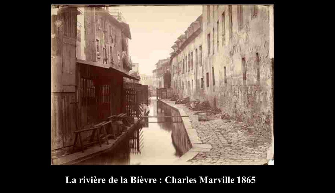 La rivière de la Bièvre : Charles Marville 1865