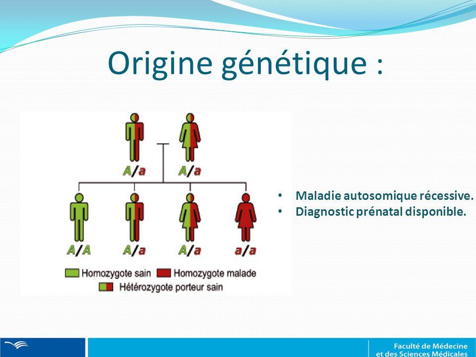 Maladie autosomique récessive. Diagnostic prénatal disponible. Origine génétique :