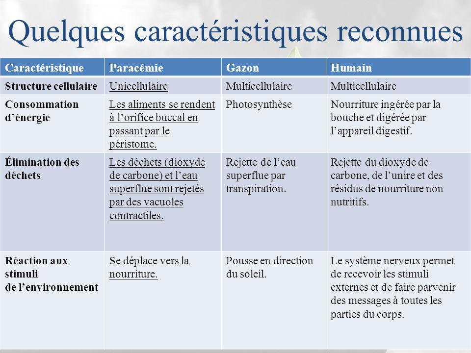 Quelques caractéristiques reconnues CaractéristiqueParacémieGazonHumain Structure cellulaireUnicellulaireMulticellulaire Consommation d'énergie Les al