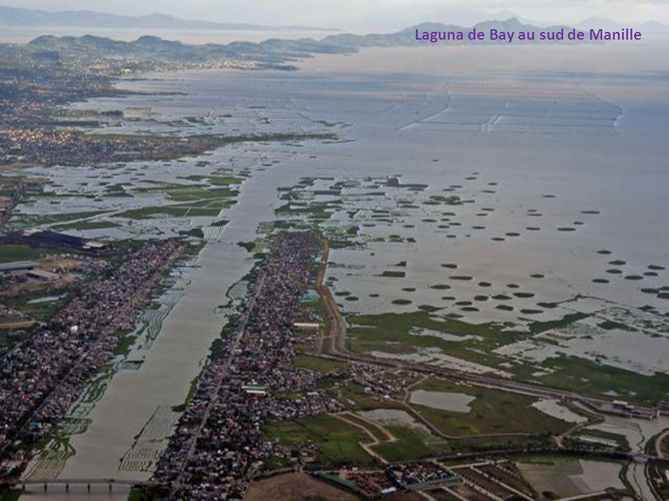 Paysage typique de la ceinture verte autour de Manille