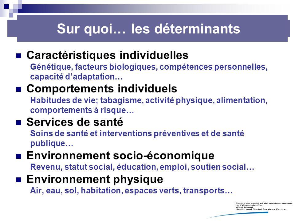 Caractéristiques individuelles Génétique, facteurs biologiques, compétences personnelles, capacité d'adaptation… Comportements individuels Habitudes d