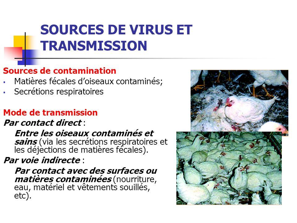 SOURCES DE VIRUS ET TRANSMISSION Sources de contamination  Matières fécales d'oiseaux contaminés;  Secrétions respiratoires Mode de transmission Par