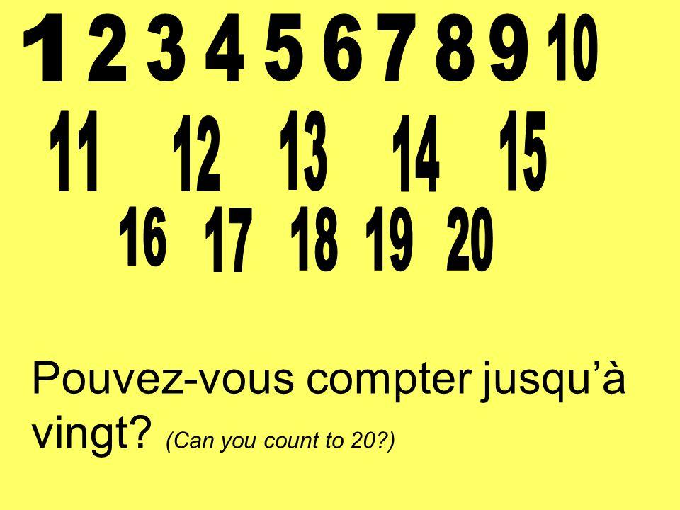 Pouvez-vous compter jusqu'à vingt? (Can you count to 20?)