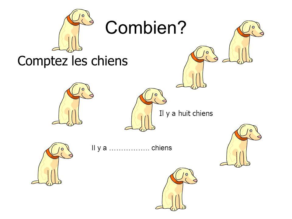 Combien? Comptez les chiens Il y a huit chiens Il y a …………….. chiens