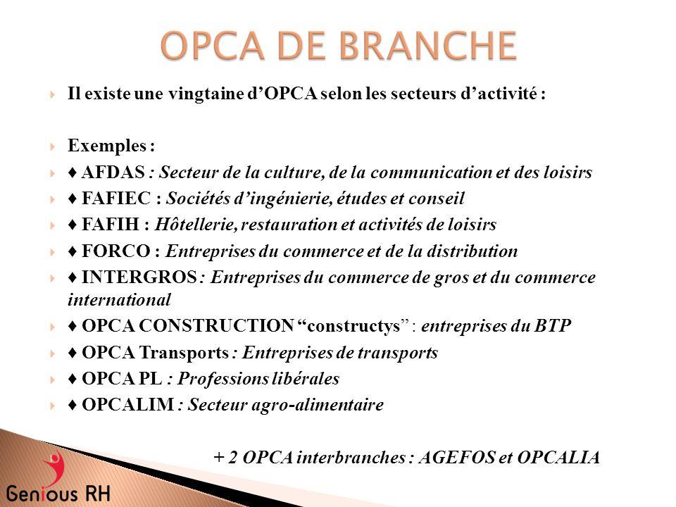  Il existe une vingtaine d'OPCA selon les secteurs d'activité :  Exemples :  ♦ AFDAS : Secteur de la culture, de la communication et des loisirs 