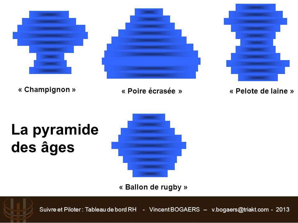 Suivre et Piloter : Tableau de bord RH - Vincent BOGAERS – v.bogaers@triakt.com - 2013 « Champignon » « Poire écrasée »« Pelote de laine » « Ballon de
