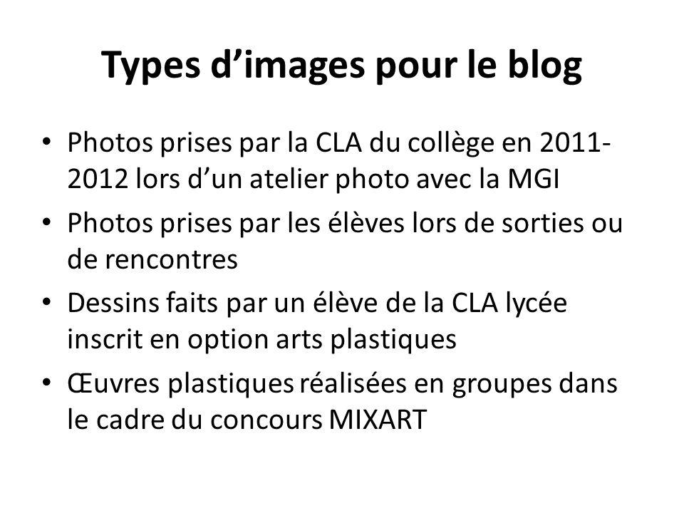 Types d'images pour le blog Photos prises par la CLA du collège en 2011- 2012 lors d'un atelier photo avec la MGI Photos prises par les élèves lors de