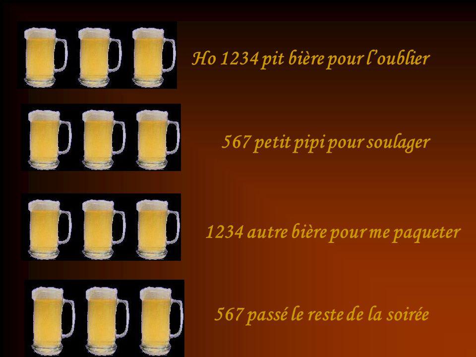 Ho 1234 pit bière pour l'oublier 567 petit pipi pour soulager 1234 autre bière pour me paqueter 567 passé le reste de la soirée