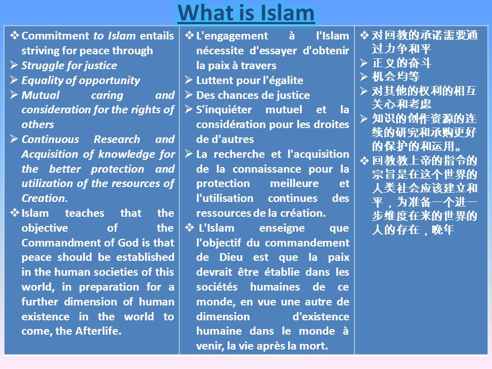  Commitment to Islam entails striving for peace through  Struggle for justice  Equality of opportunity  Mutual caring and consideration for the rights of others  Continuous Research and Acquisition of knowledge for the better protection and utilization of the resources of Creation.