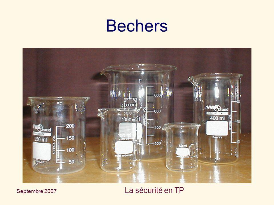 Septembre 2007 La sécurité en TP Bechers