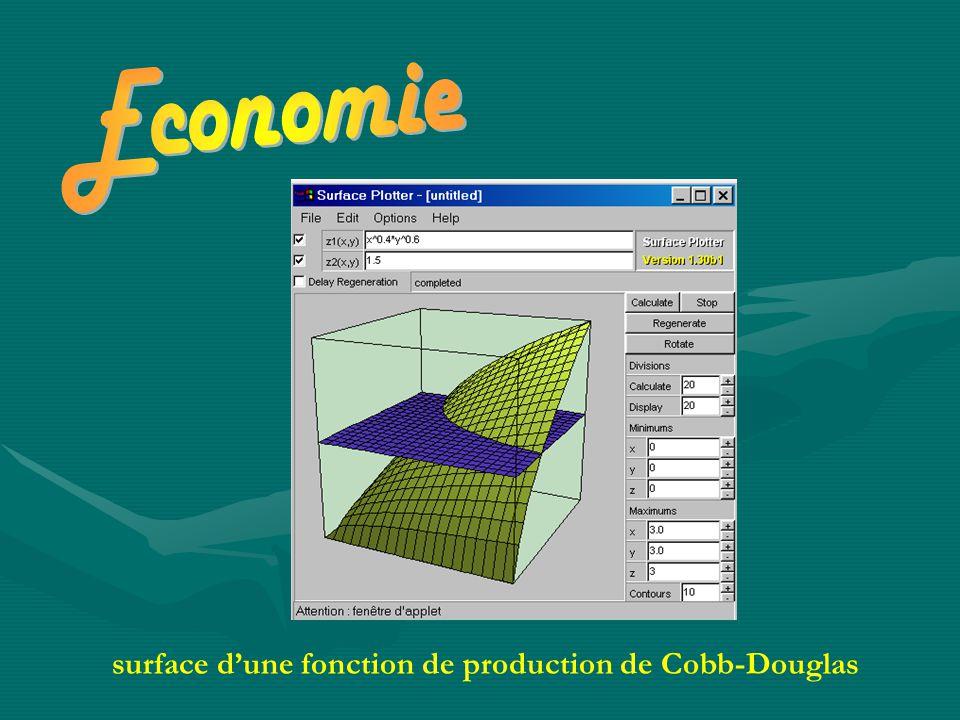 surface d'une fonction de production de Cobb-Douglas