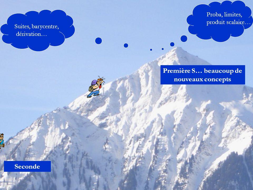 Seconde Première S… beaucoup de nouveaux concepts Proba, limites, produit scalaire… Suites, barycentre, dérivation…