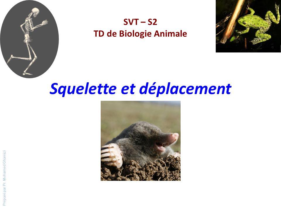 Squelette et déplacement SVT – S2 TD de Biologie Animale Préparé par Pr. Mohamed Ghamizi