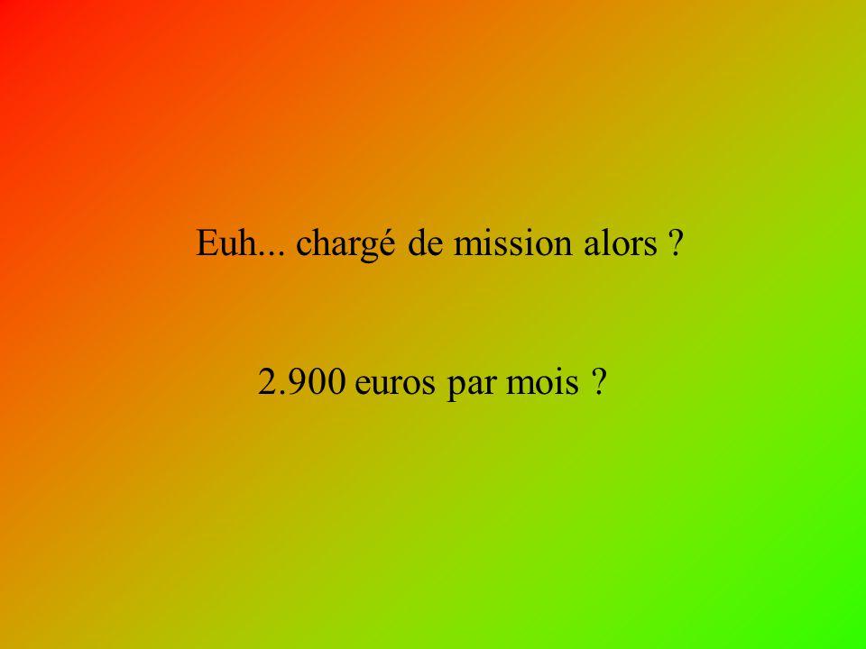 Euh... chargé de mission alors ? 2.900 euros par mois ?
